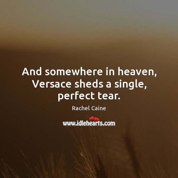 And somewhere in heaven, Versace sheds a single, perfect tear. Rachel Caine Picture Quote