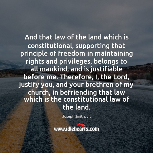 Image, And that law of the land which is constitutional, supporting that principle