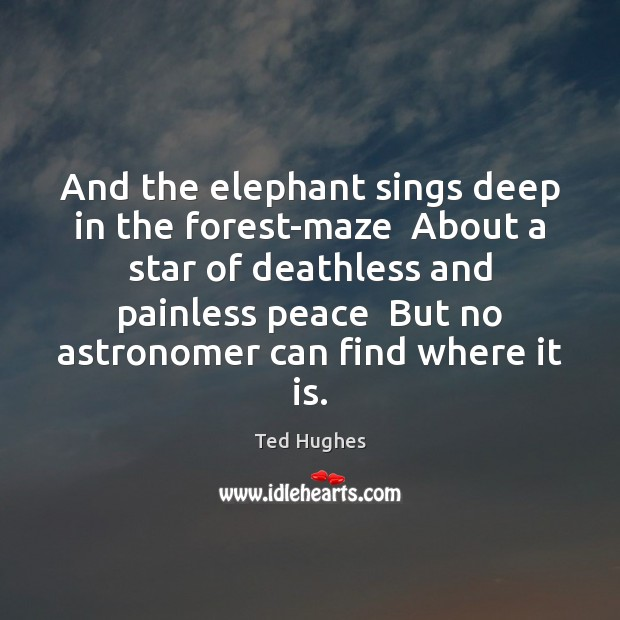And the elephant sings deep in the forest-maze  About a star of Ted Hughes Picture Quote