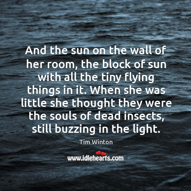 And the sun on the wall of her room, the block of Tim Winton Picture Quote