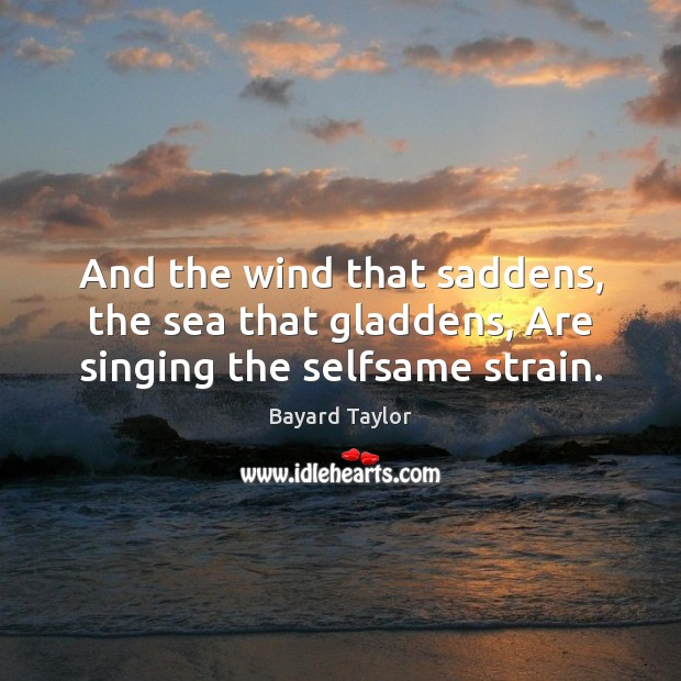 And the wind that saddens, the sea that gladdens, Are singing the selfsame strain. Bayard Taylor Picture Quote