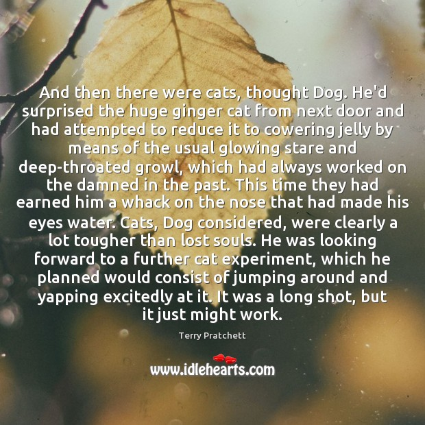 And then there were cats, thought Dog. He'd surprised the huge ginger Terry Pratchett Picture Quote
