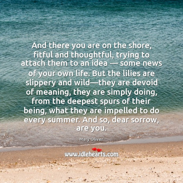 And there you are on the shore, fitful and thoughtful, trying to Image