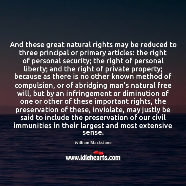Image, And these great natural rights may be reduced to three principal or