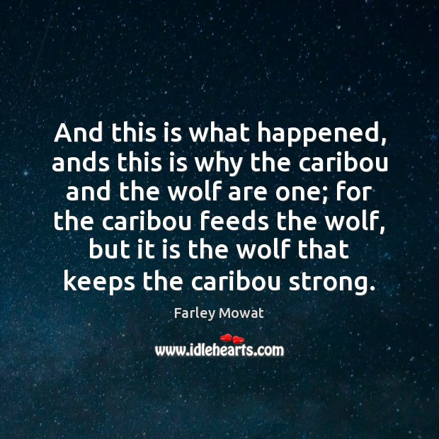 And this is what happened, ands this is why the caribou and Image