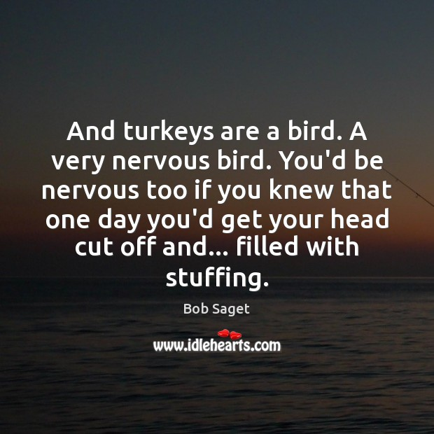 And turkeys are a bird. A very nervous bird. You'd be nervous Bob Saget Picture Quote