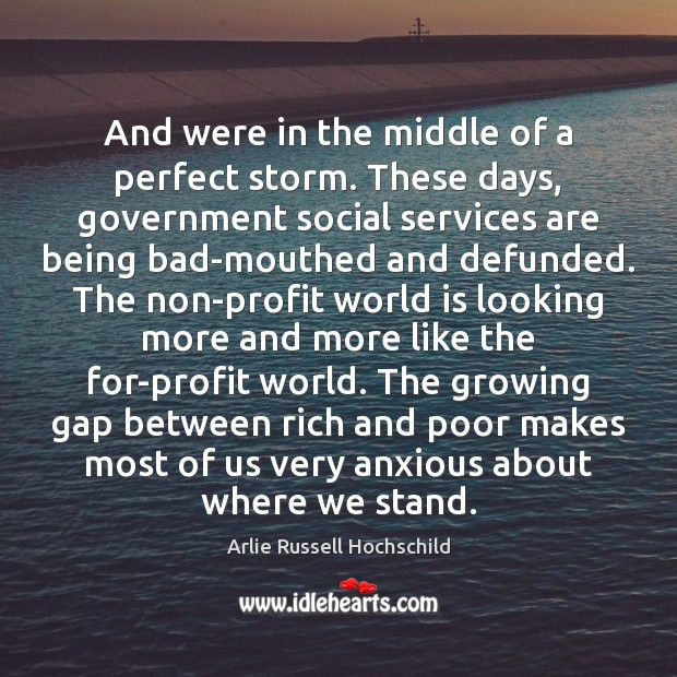 And were in the middle of a perfect storm. These days, government Arlie Russell Hochschild Picture Quote