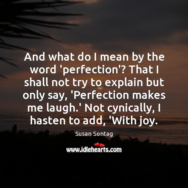 And what do I mean by the word 'perfection'? That I shall Susan Sontag Picture Quote