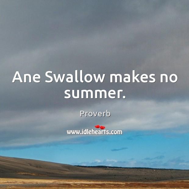 Ane swallow makes no summer. Image