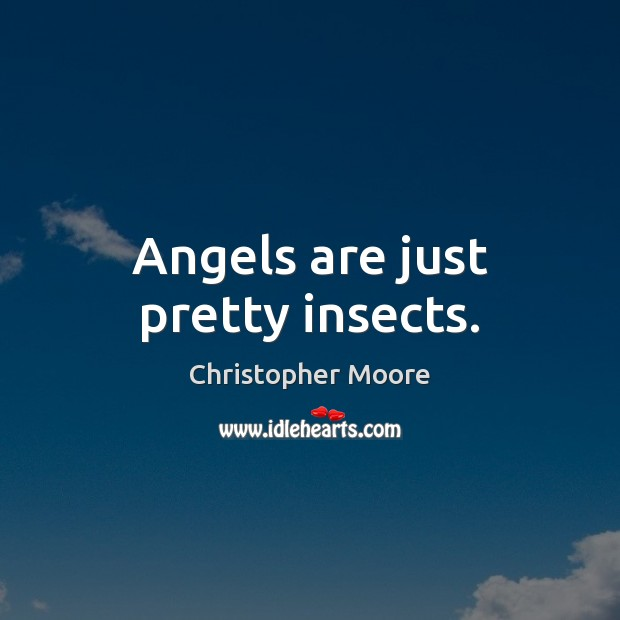 Angels are just pretty insects. Christopher Moore Picture Quote