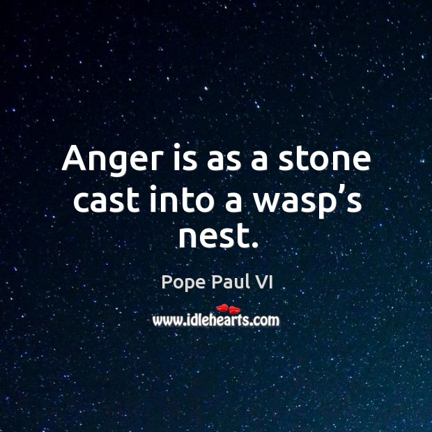 Anger is as a stone cast into a wasp's nest. Image