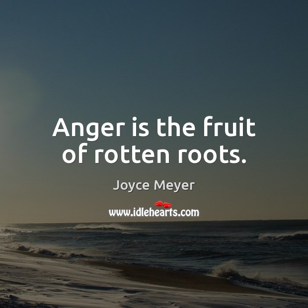 Anger is the fruit of rotten roots. Joyce Meyer Picture Quote