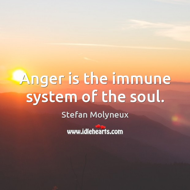 Anger is the immune system of the soul. Stefan Molyneux Picture Quote