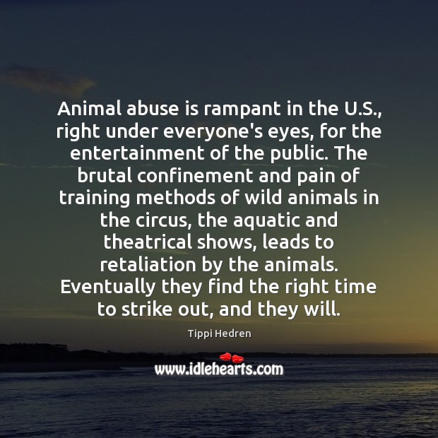 Animal abuse is rampant in the U.S., right under everyone's eyes, Image