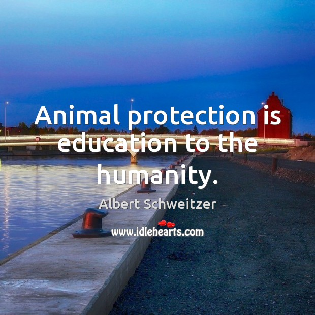 Image, Animal protection is education to the humanity.