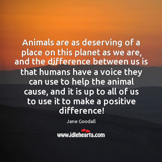 Image, Animals are as deserving of a place on this planet as we