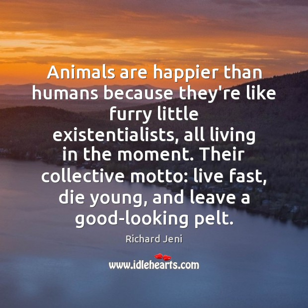 Image, Animals are happier than humans because they're like furry little existentialists, all