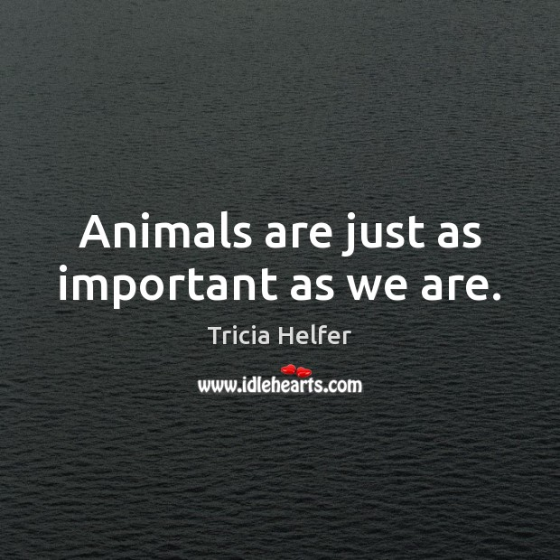 Animals are just as important as we are. Image