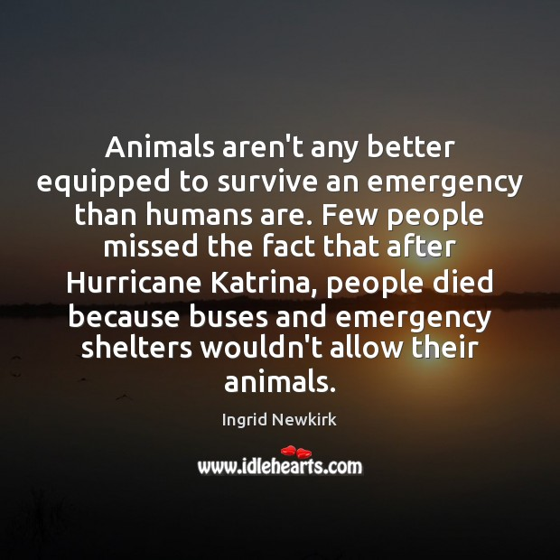 Animals aren't any better equipped to survive an emergency than humans are. Image