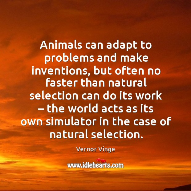 Image, Animals can adapt to problems and make inventions