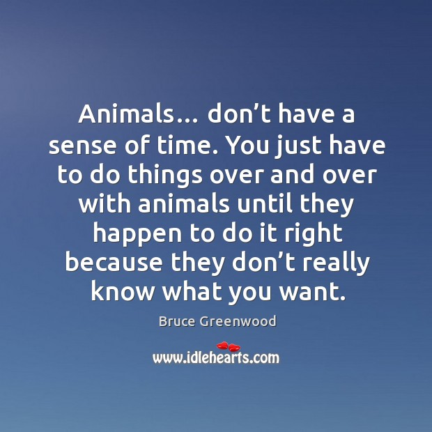 Image, Animals… don't have a sense of time. You just have to do things over and over with