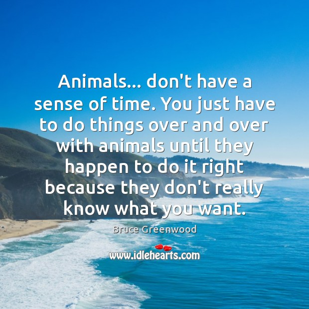 Image, Animals… don't have a sense of time. You just have to do