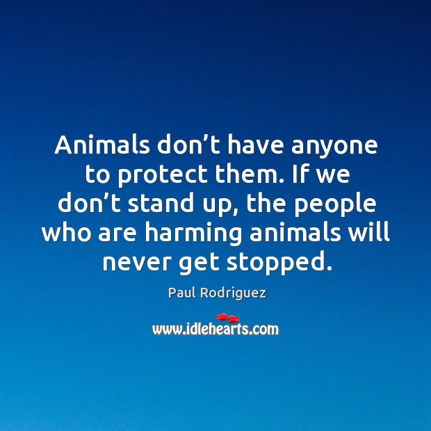 Animals don't have anyone to protect them. If we don't stand up, the people who are harming animals will never get stopped. Image
