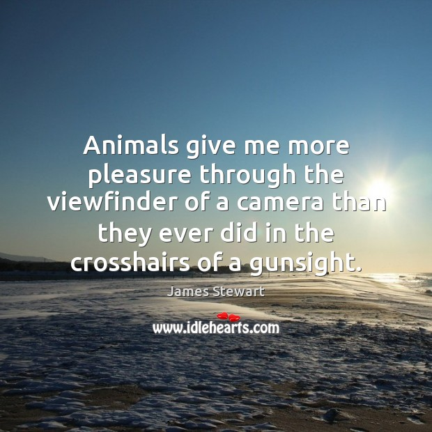 Image, Animals give me more pleasure through the viewfinder of a camera than