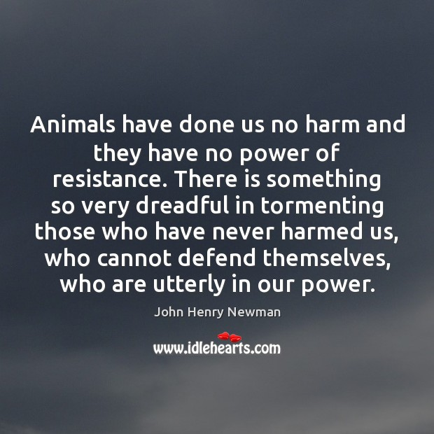 Animals have done us no harm and they have no power of John Henry Newman Picture Quote