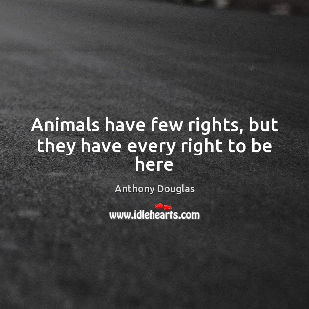 Image, Animals have few rights, but they have every right to be here