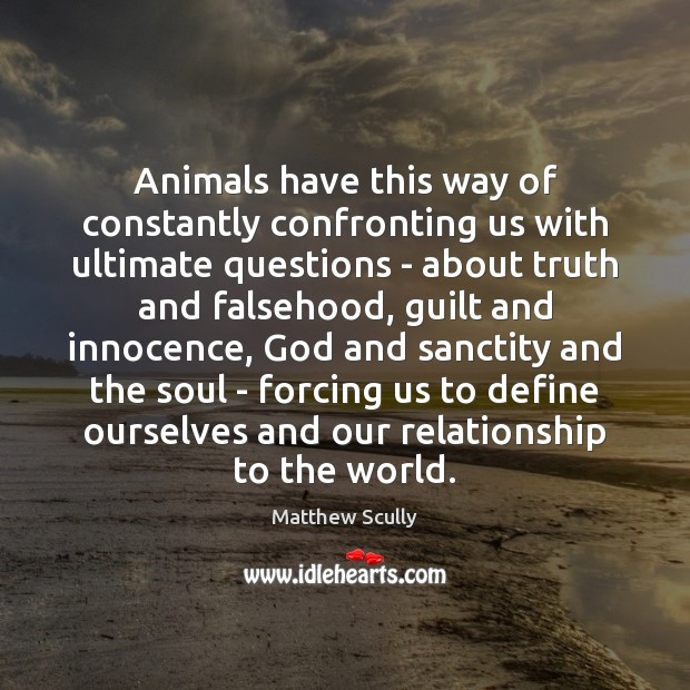 Animals have this way of constantly confronting us with ultimate questions – Matthew Scully Picture Quote