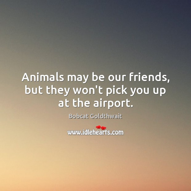 Image, Animals may be our friends, but they won't pick you up at the airport.