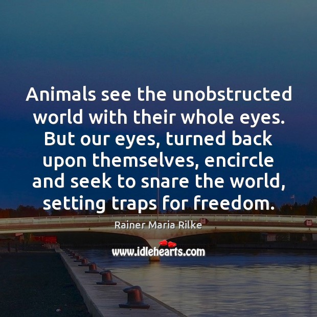 Animals see the unobstructed world with their whole eyes. But our eyes, Image