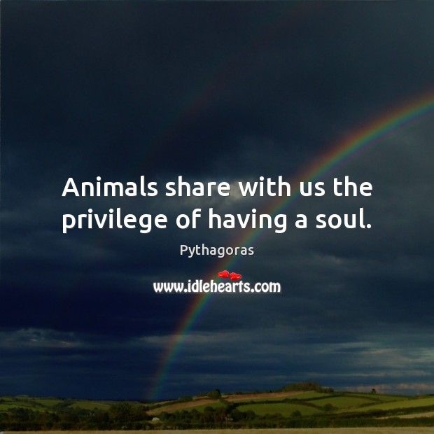 Image, Animals share with us the privilege of having a soul.
