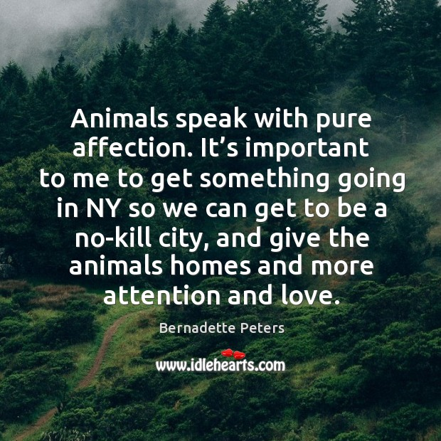 Image, Animals speak with pure affection. It's important to me to get something going in