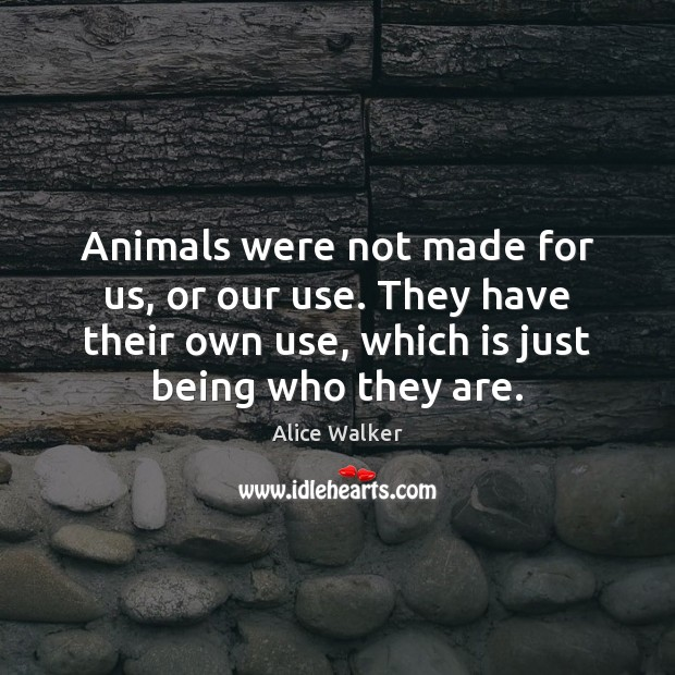 Image, Animals were not made for us, or our use. They have their