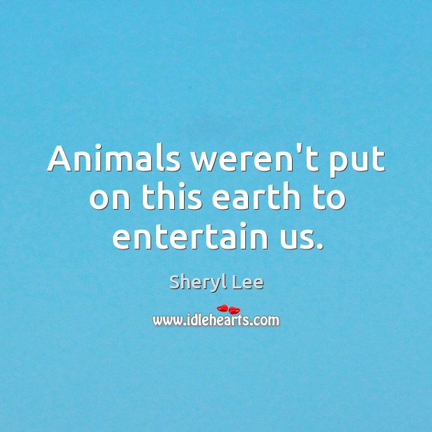 Animals weren't put on this earth to entertain us. Image