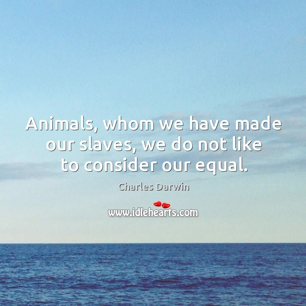 Image, Animals, whom we have made our slaves, we do not like to consider our equal.