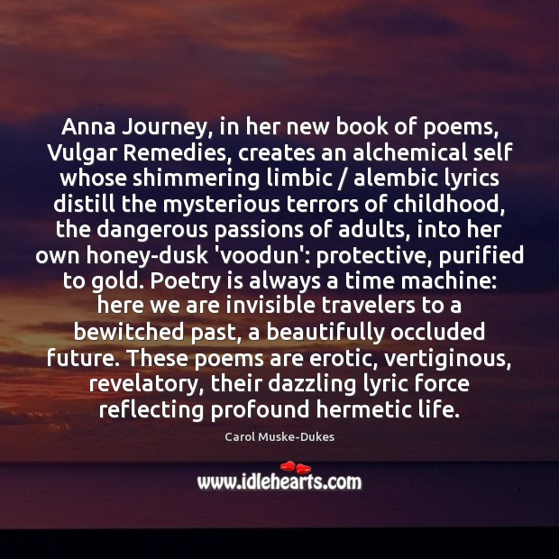 Image, Anna Journey, in her new book of poems, Vulgar Remedies, creates an