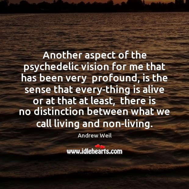 Another aspect of the psychedelic vision for me that has been very Image