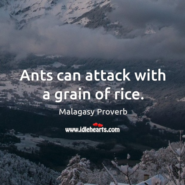 Ants can attack with a grain of rice. Malagasy Proverbs Image
