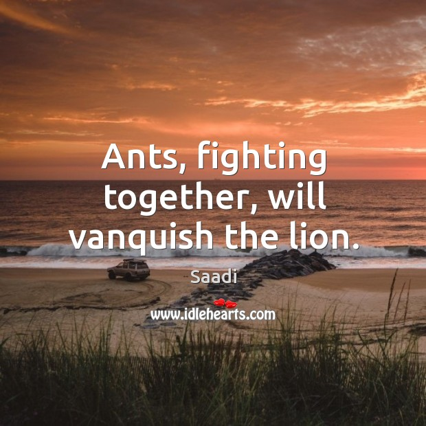Ants, fighting together, will vanquish the lion. Image