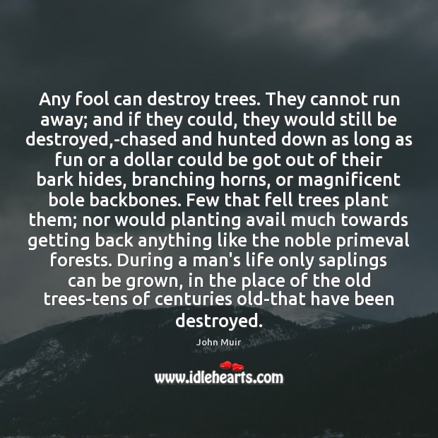 Any fool can destroy trees. They cannot run away; and if they John Muir Picture Quote
