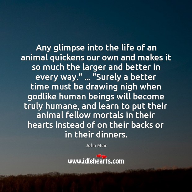 Any glimpse into the life of an animal quickens our own and Image