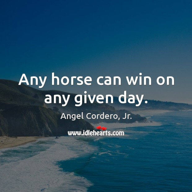 Image, Any horse can win on any given day.