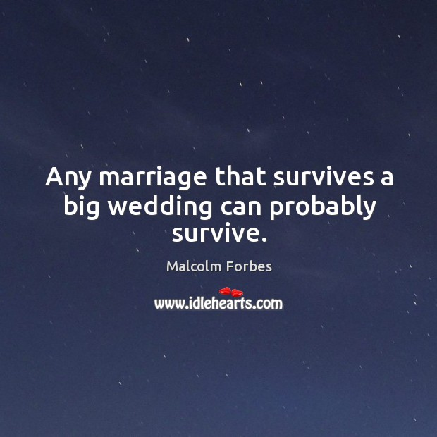 Any marriage that survives a big wedding can probably survive. Image