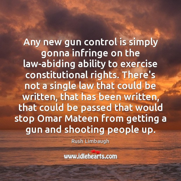 Any new gun control is simply gonna infringe on the law-abiding ability Image