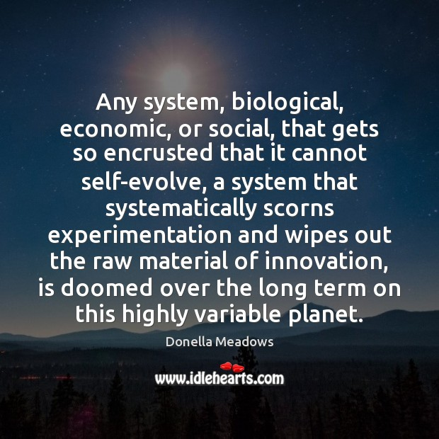 Any system, biological, economic, or social, that gets so encrusted that it Donella Meadows Picture Quote