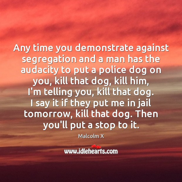Any time you demonstrate against segregation and a man has the audacity Malcolm X Picture Quote