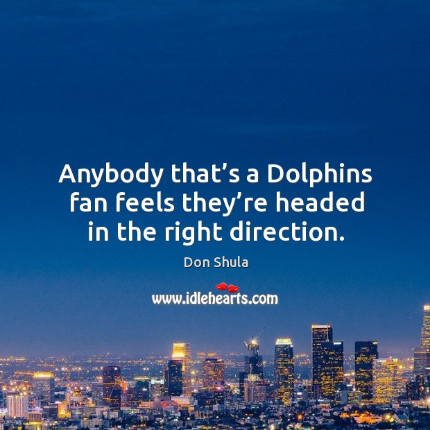 Anybody that's a dolphins fan feels they're headed in the right direction. Image